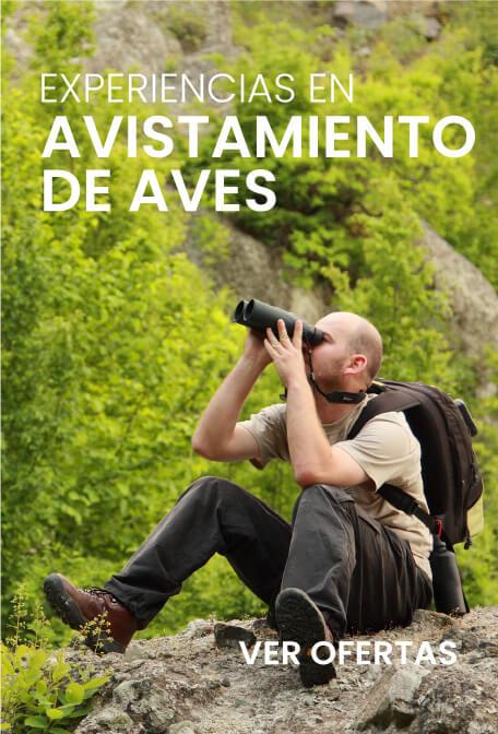 Promociones aviajarturismo.com